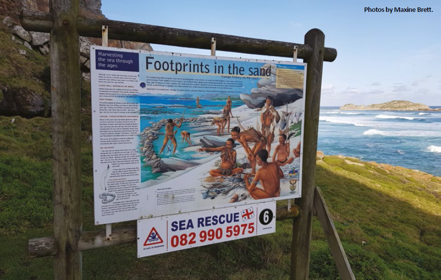 new paleo route for southern cape coast