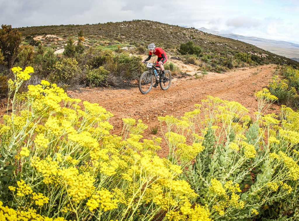 The Karoo to Coast route passes through four distinct biomes on its way from Uniondale to Knysna via the Prince Alfred's Pass. Photo by Oakpics.com.