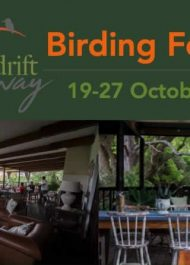 Dinner and Birding Lecture