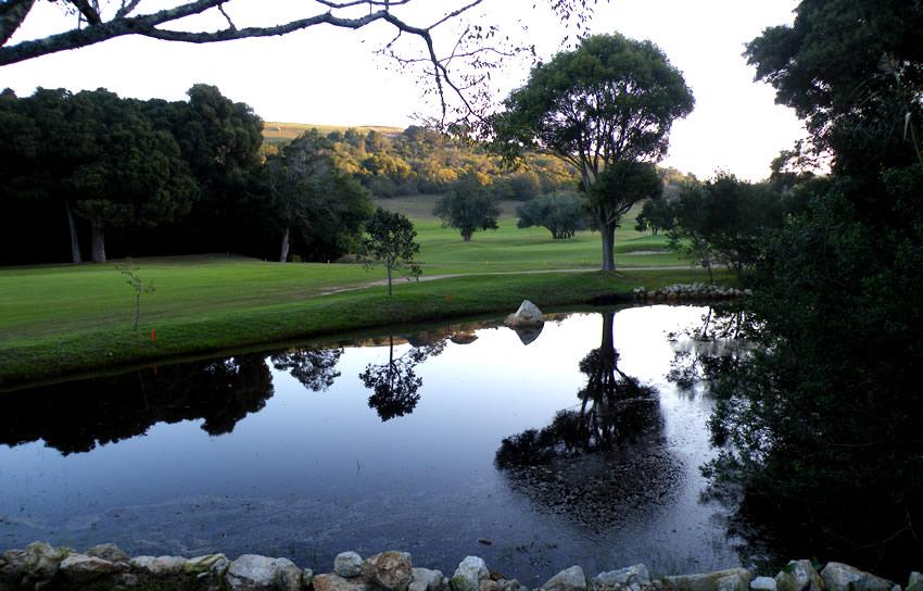 twilight-run-plett-golf-course