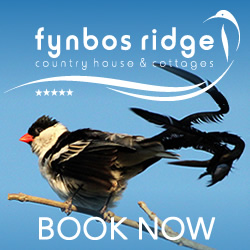 Book country lodge accommodation in Plettenberg Bay
