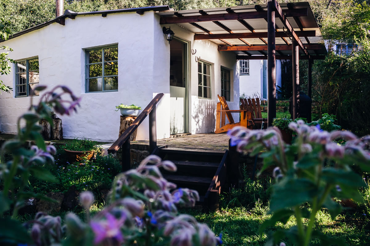 Boschrivier farm self catering Plettenberg Bay - Boschrivier Farm and Cottage