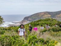 Garden Route Walking Festival