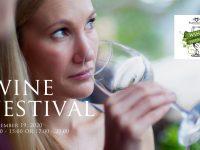 The Barrington's Wine Festival