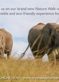 Plett's Knysna Elephant Park launches new nature walk