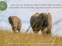 Plett's Knysna Elephant Park launches new nature walk
