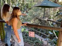 Birds of Eden Hiking Trail now open