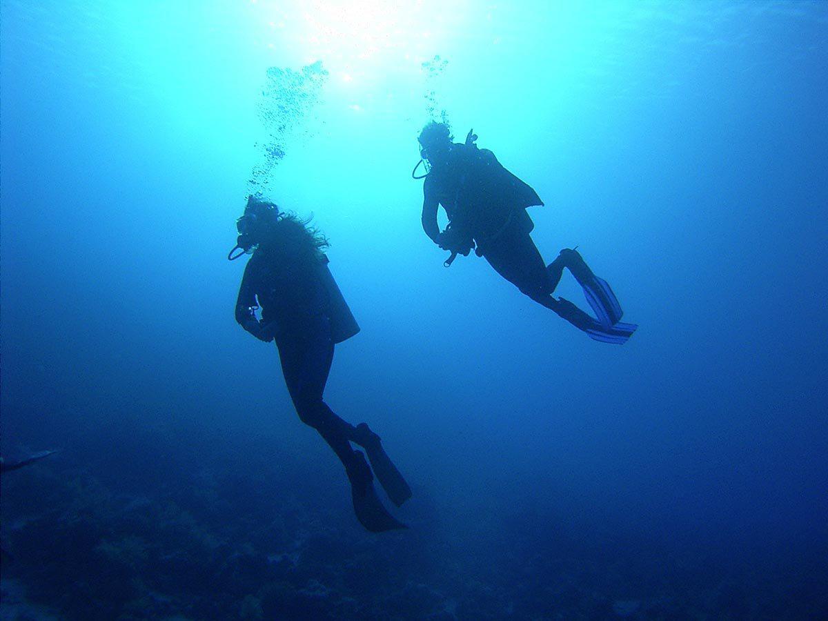 Pro Dive Scuba Dive Plett