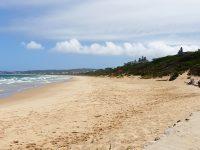 Beaches open in Plett under adjusted Level 3