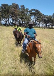 Griqua Heritage Horses found a home and purpose