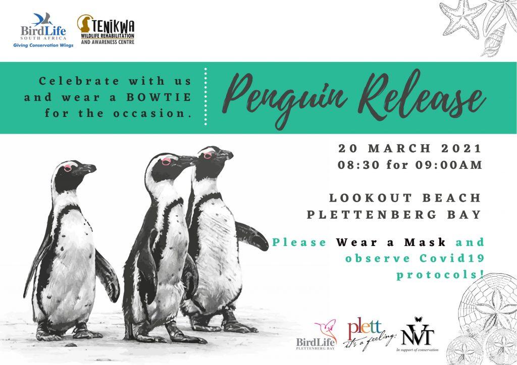 12th Penguin Release Plett