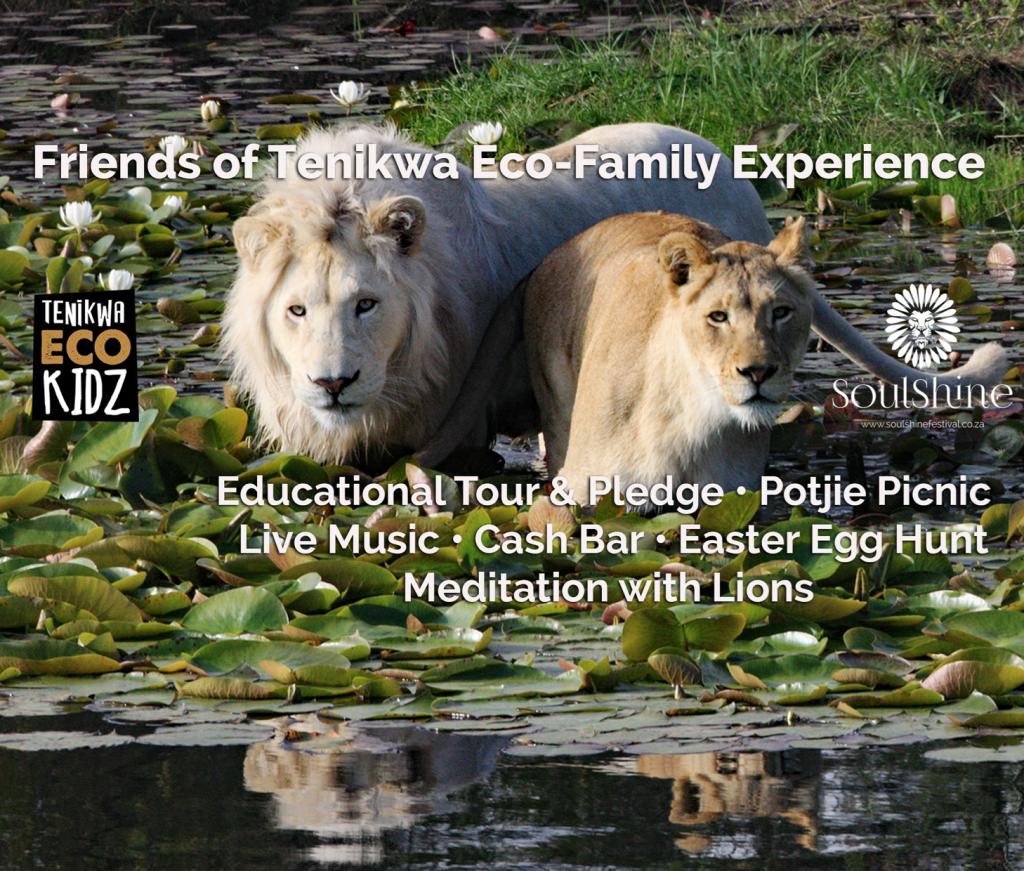Friends of Tenikwa Eco-Family Experience