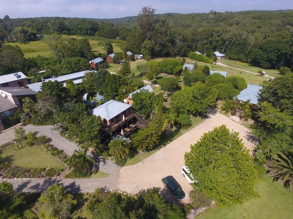 Harkerville Forest Lodge accommodation in Plettenberg Bay