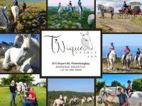 T'Niqua Stable Inn Equestrian Activities