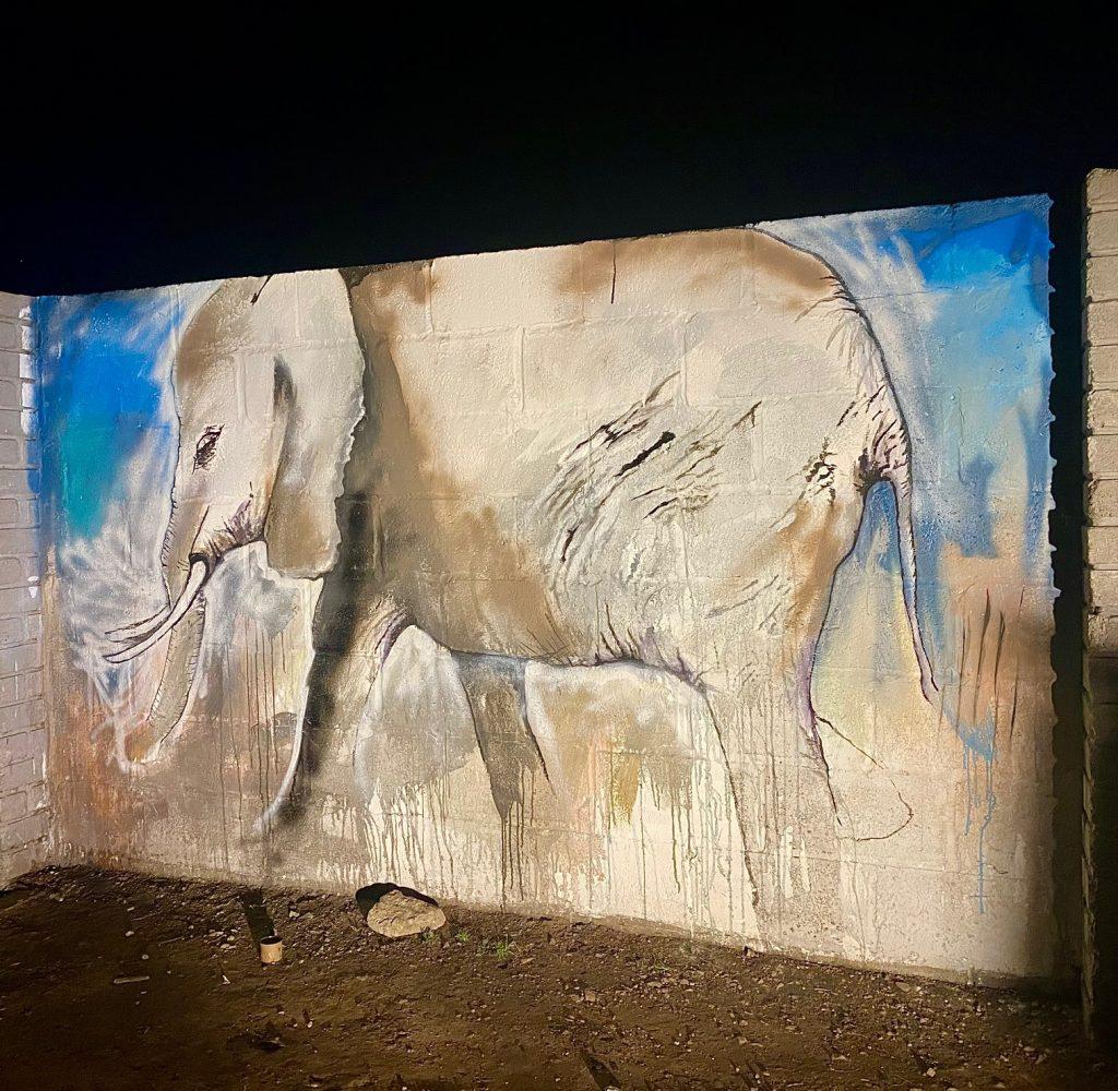 Mural on Kwa-Nokuthula Stadium Walls IMG_2531