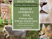 #PlettLocal Wild Cat Special