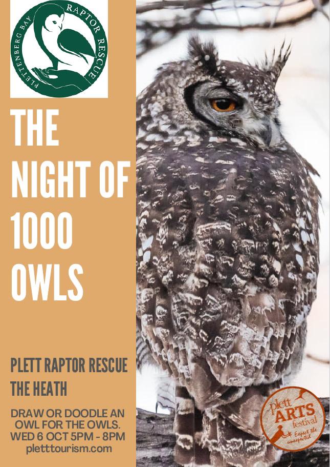 night of 1000 owls