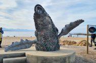 whale sculpture central beach