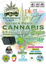 Cannabis Festival starts this Friday