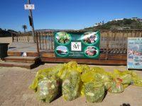 NVT Plett World Clean-up Day
