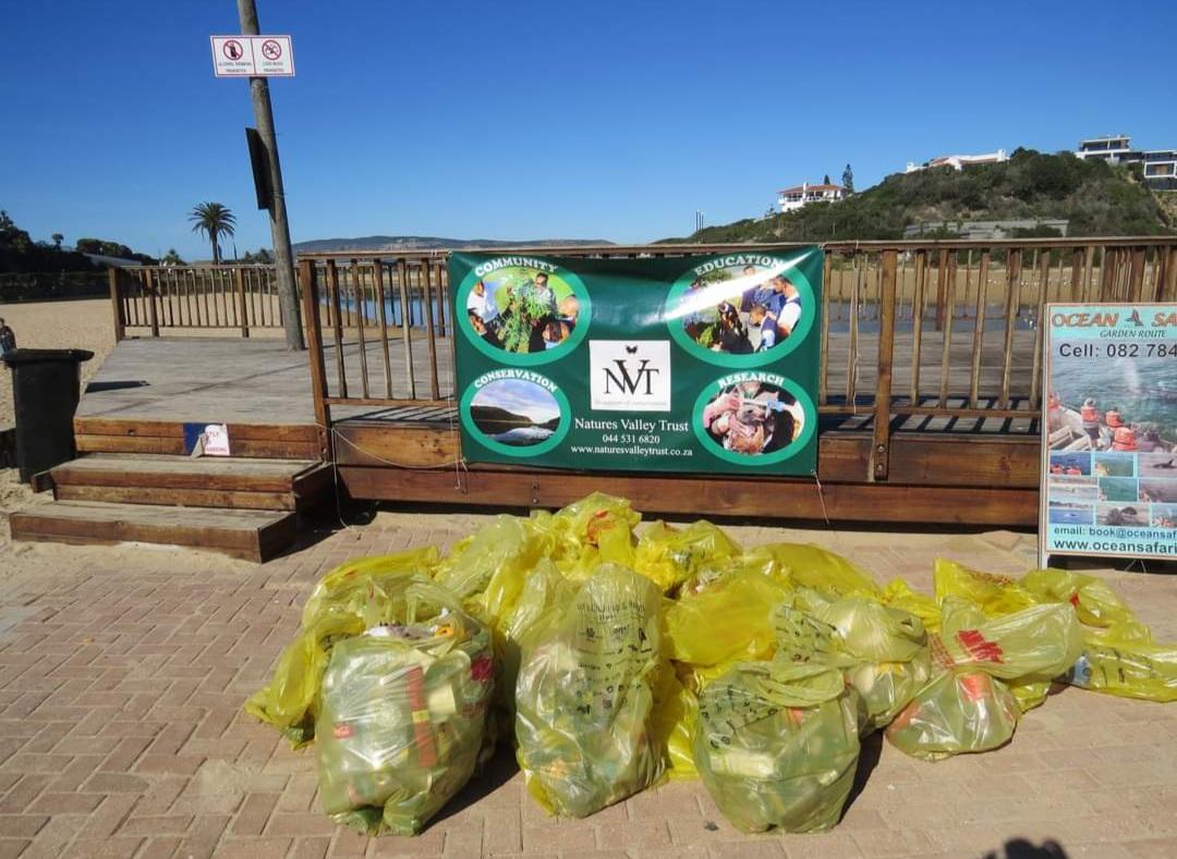 Clean Up on Plett Beaches