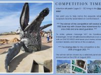 Whale Naming Competition
