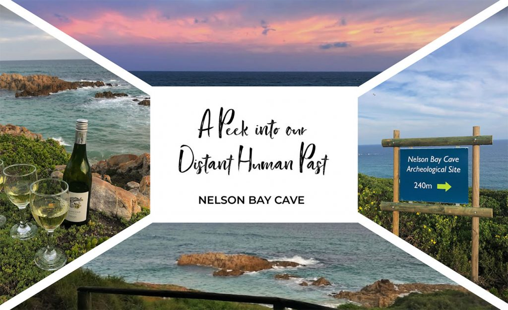 A peak into our distant human past at Nelson Bay Cave